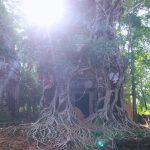 【2016年】カンボジアの絶景スポット!【遺跡群】